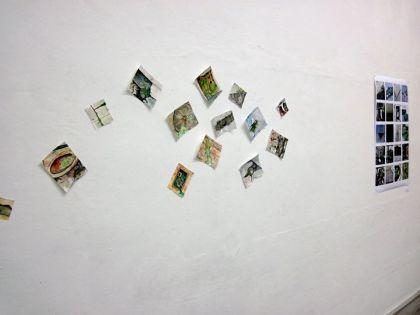 Work by RINA KIM