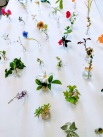 WhatsApp Image 2019-05-11 at 18.01.27 (3)