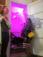 WhatsApp Image 2019-05-11 at 18.38.29